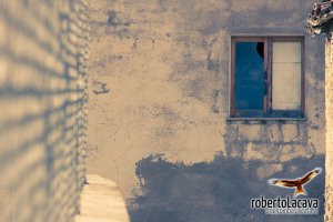 foto - Oliveto Lucano - Basilicata