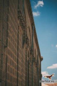 foto - Palazzo San Gervasio - Basilicata