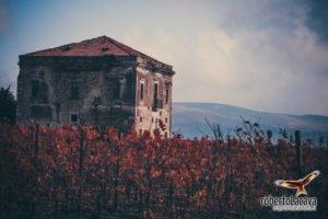 foto - Barile - Basilicata