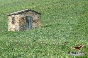 foto - Baragiano - Basilicata